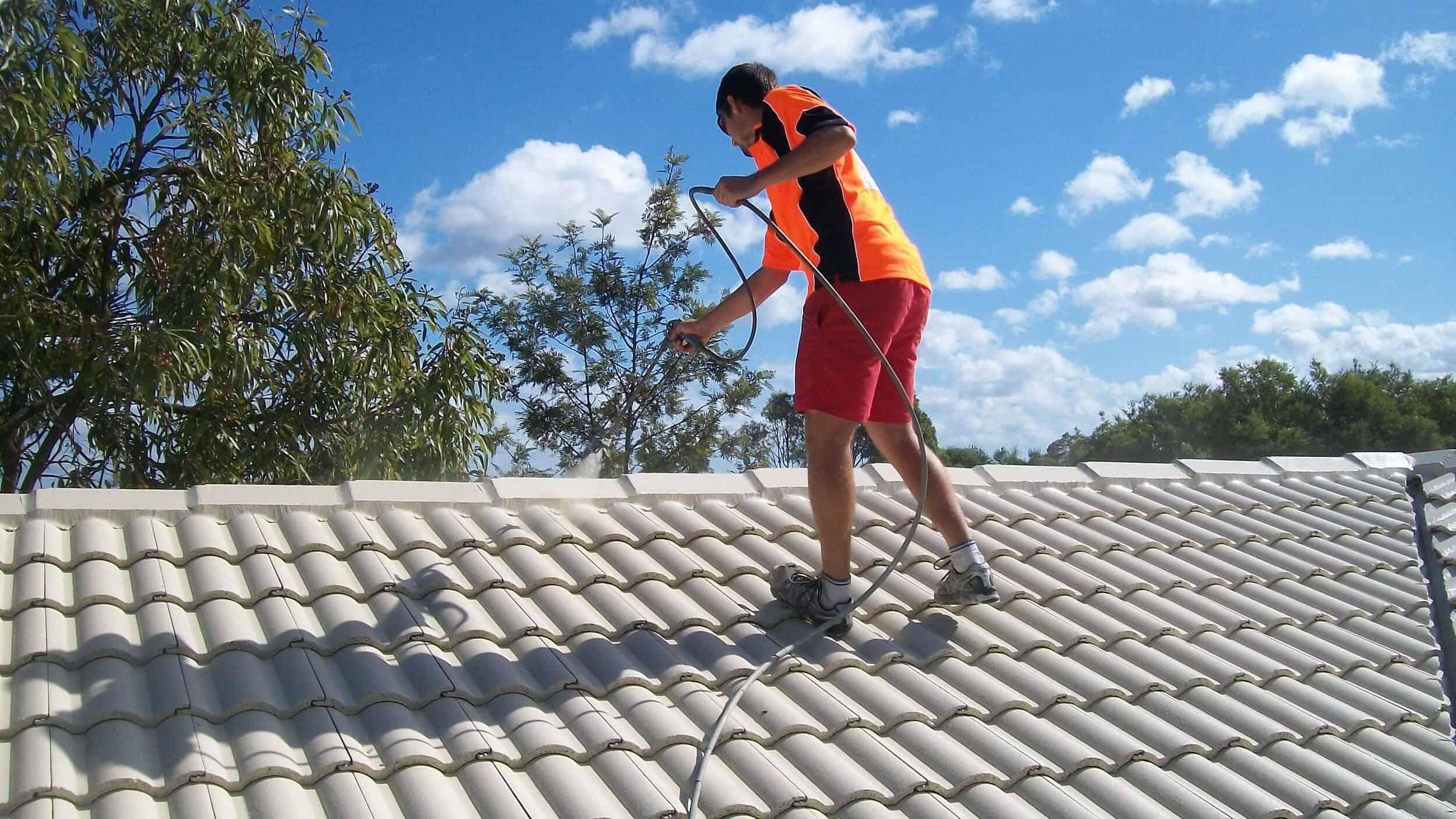 Roof Painter